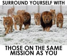 surround-yourself-same-mission